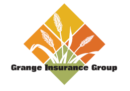 Grange Insurance Names Tim Cunningham Chief Information ...